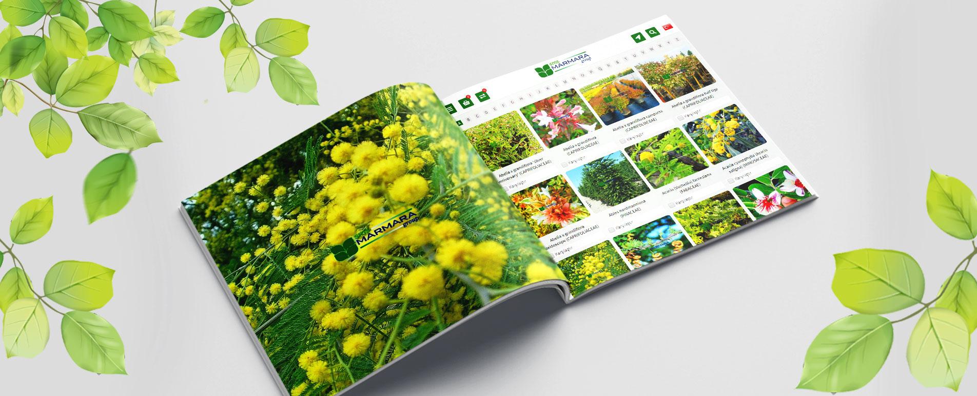 Web sitemiz ve Ürünlerimiz Sayfası yenilendi